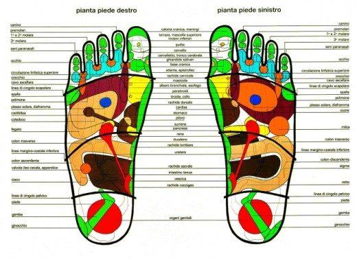 Mappa Zone Piede Riflessologia Plantare Fisioterapia Dott. Notarrigo San Lazzaro Bologna